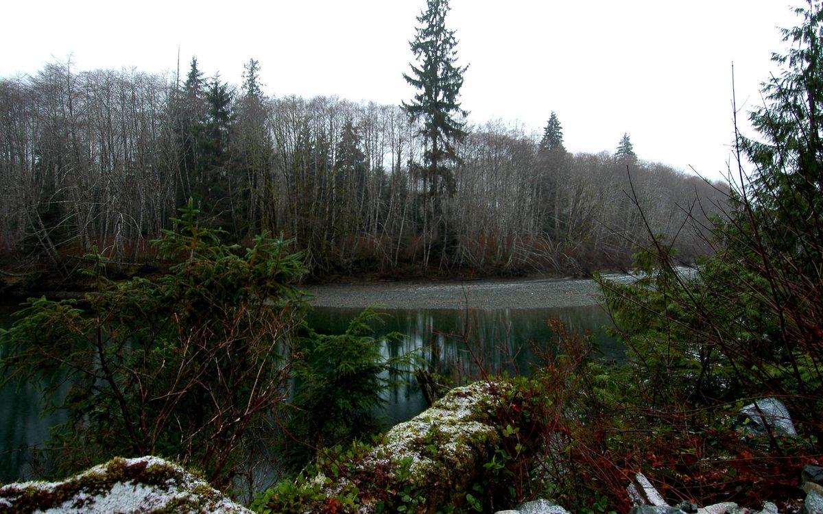 Фото бесплатно осень, река, камни, мох, деревья, небо, природа