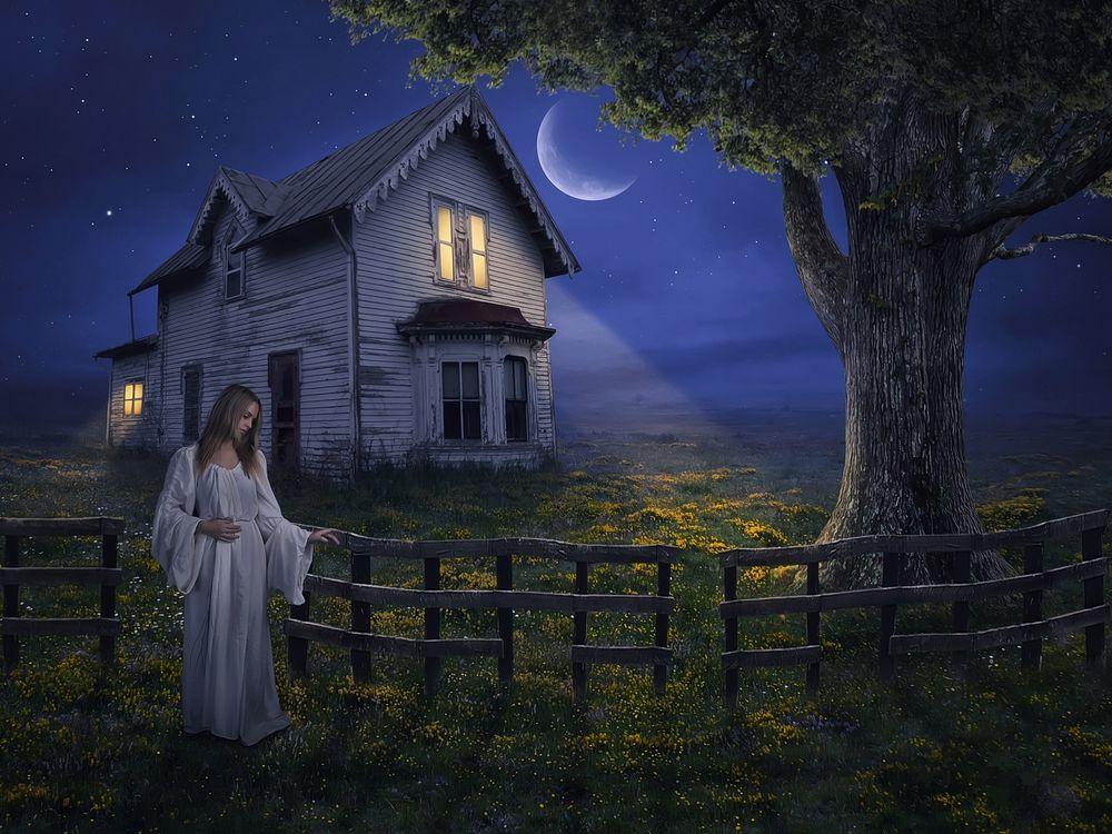 Фото бесплатно ночь, луна, дом, девушка, art, рендеринг