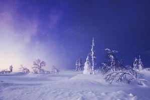Бесплатные фото Лапландия,Финляндия,деревья,снег,сугробы,пейзаж