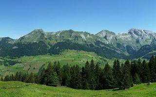 Фото бесплатно лето, горы, трава, деревья, деревня, дома
