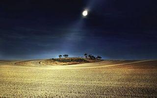 Бесплатные фото Луна, поле, деревья, холм, ночь