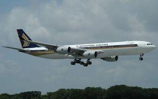 Бесплатные фото самолет,пасажирский,крылья,турбины,хвост,шасси,посадка