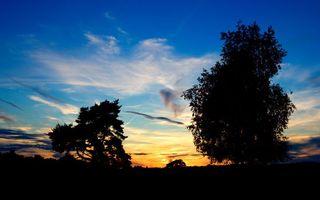 Бесплатные фото вечер,деревья,листва,небо,облака,закат
