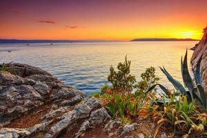 Бесплатные фото закат,море,берег,скалы,деревья,пейзаж