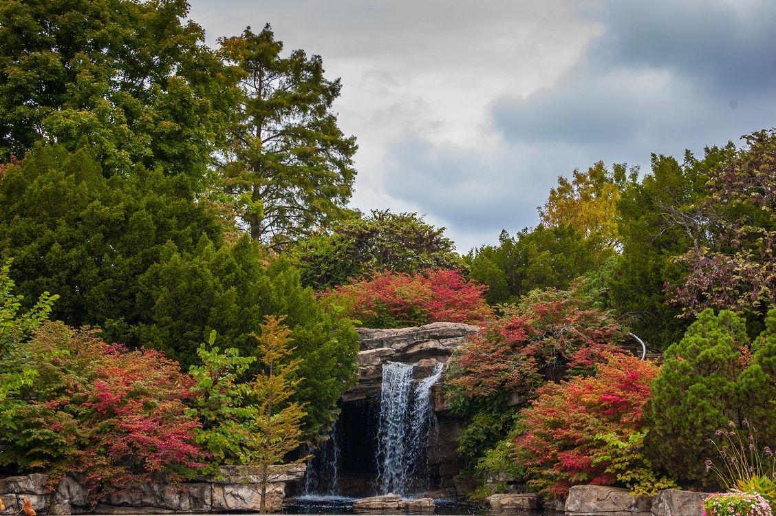 Фото бесплатно водопад, осень, лес, деревья, скалы, природа, природа