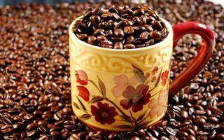 Бесплатные фото кружка,рисунок,полная,кофе,зерна,много