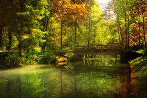 Бесплатные фото осень,лес,парк,канал,речка,мост,деревья