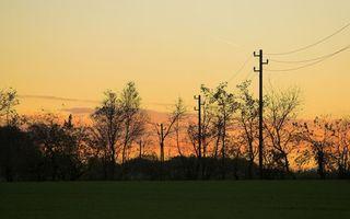 Бесплатные фото вечер,поле,деревья,столбы,провода,небо,закат