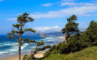 Бесплатные фото океан, пляж, песок, облака, трава
