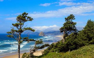 Фото бесплатно океан, пляж, песок, облака, трава