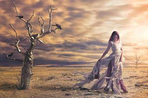 Бесплатные фото закат,поле,пустыня,деревья,девушка