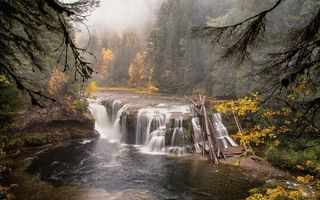 Бесплатные фото река,течение,водопад,лес,деревья,природа