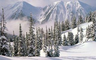 Бесплатные фото зима,горы,снег,сугробы,деревья,дымка
