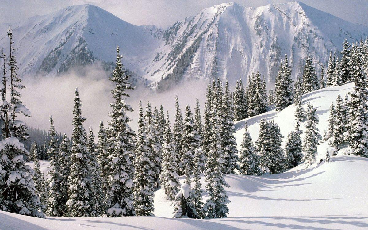 Фото бесплатно зима, горы, снег, сугробы, деревья, дымка, природа