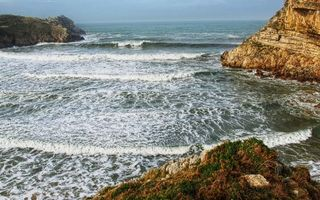 Фото бесплатно побережье, растительность, камни