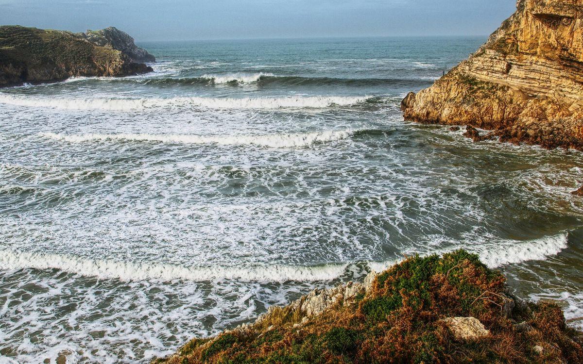 Обои побережье, растительность, камни картинки на телефон