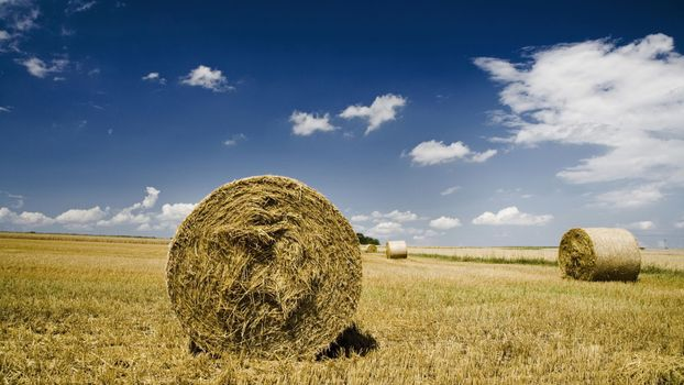 Photo free sky, horizon, bales