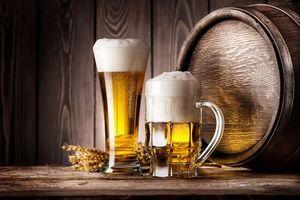 Фото бесплатно пиво, кружка, колосья