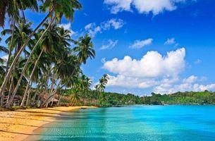Заставки океан, пальмы, пляж