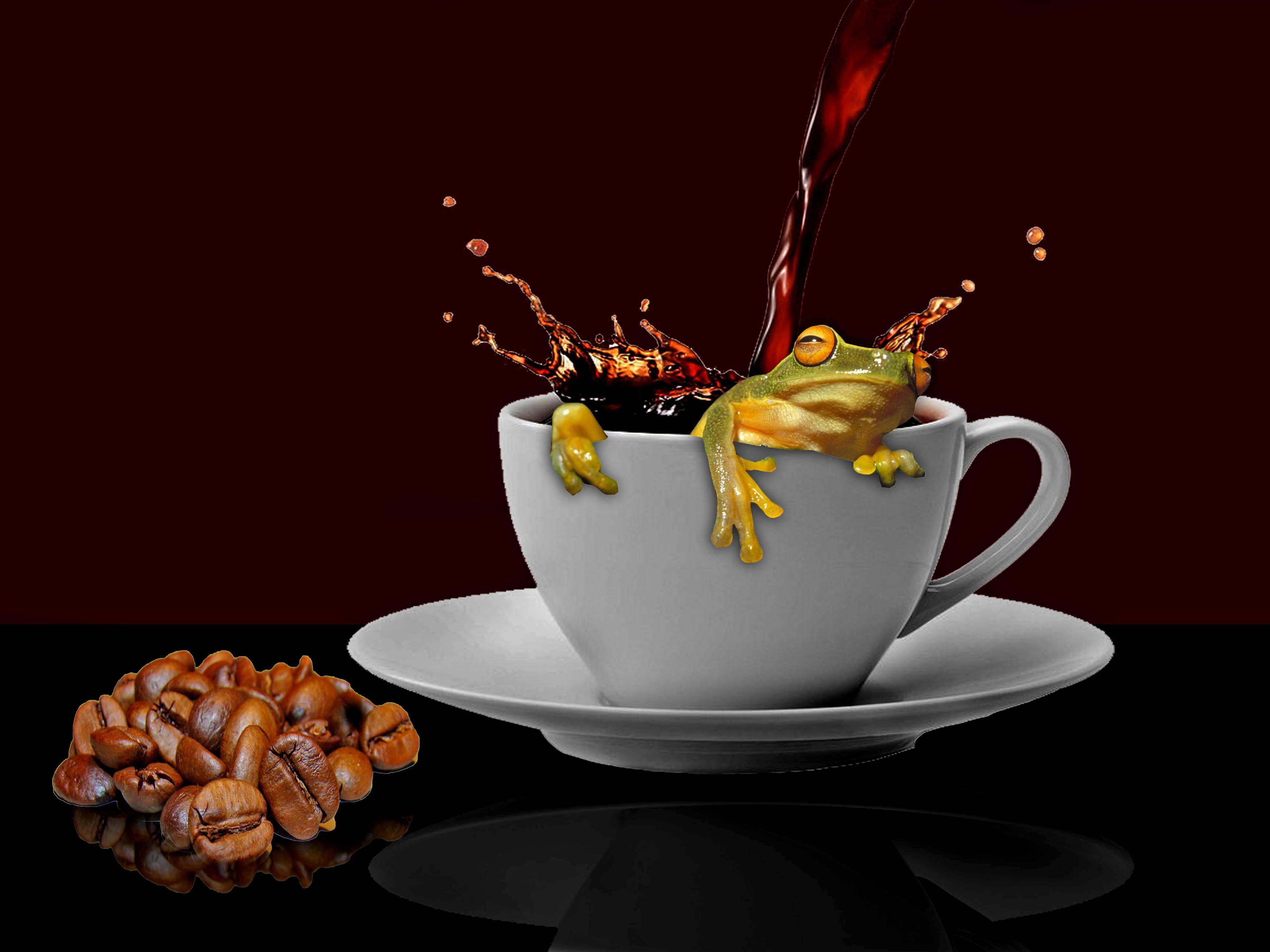 Обои чашка, кофе, лягушка, art