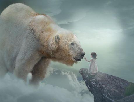 Бесплатные фото белый медведь,полярный медведь,девочка,ребёнок,art
