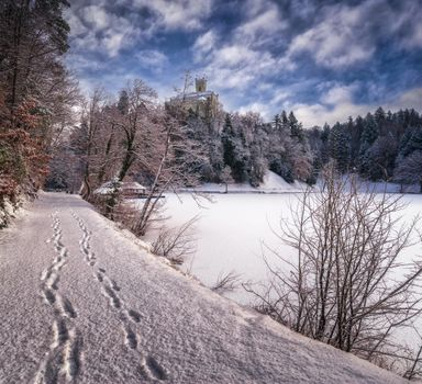 Фото бесплатно Castle Trakoscan, Croatia, зима