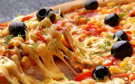 Бесплатные фото пицца,сыр,оливки,укроп,помидоры,перец