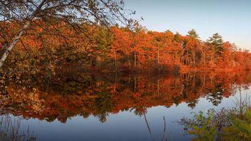 Заставки река, осень, лес, деревья, красиво, отражение, закат, вечер