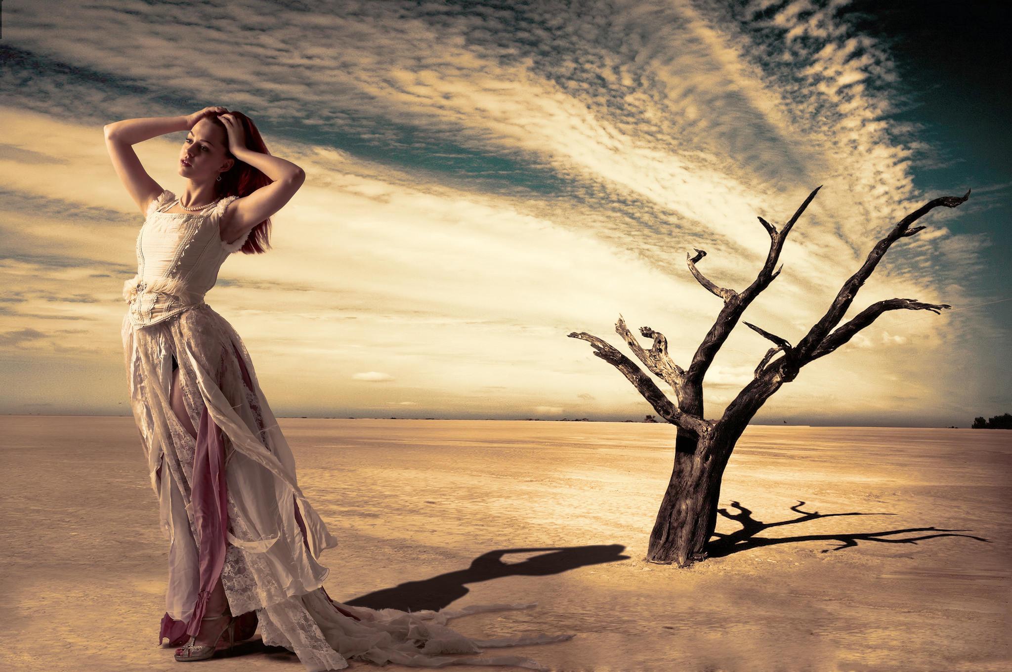 обои закат, поле, дерево, девушка картинки фото