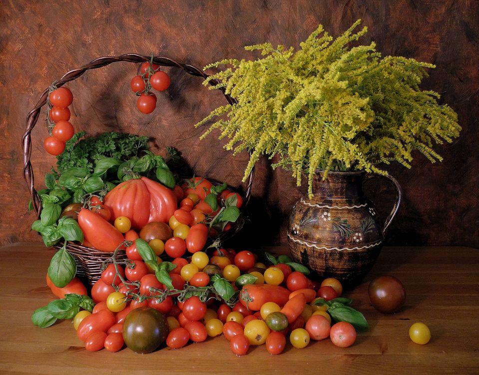 Фото бесплатно цветы, помидоры, натюрморт, еда