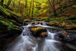 Фото бесплатно осень, река, водопад, лес, деревья, пейзаж