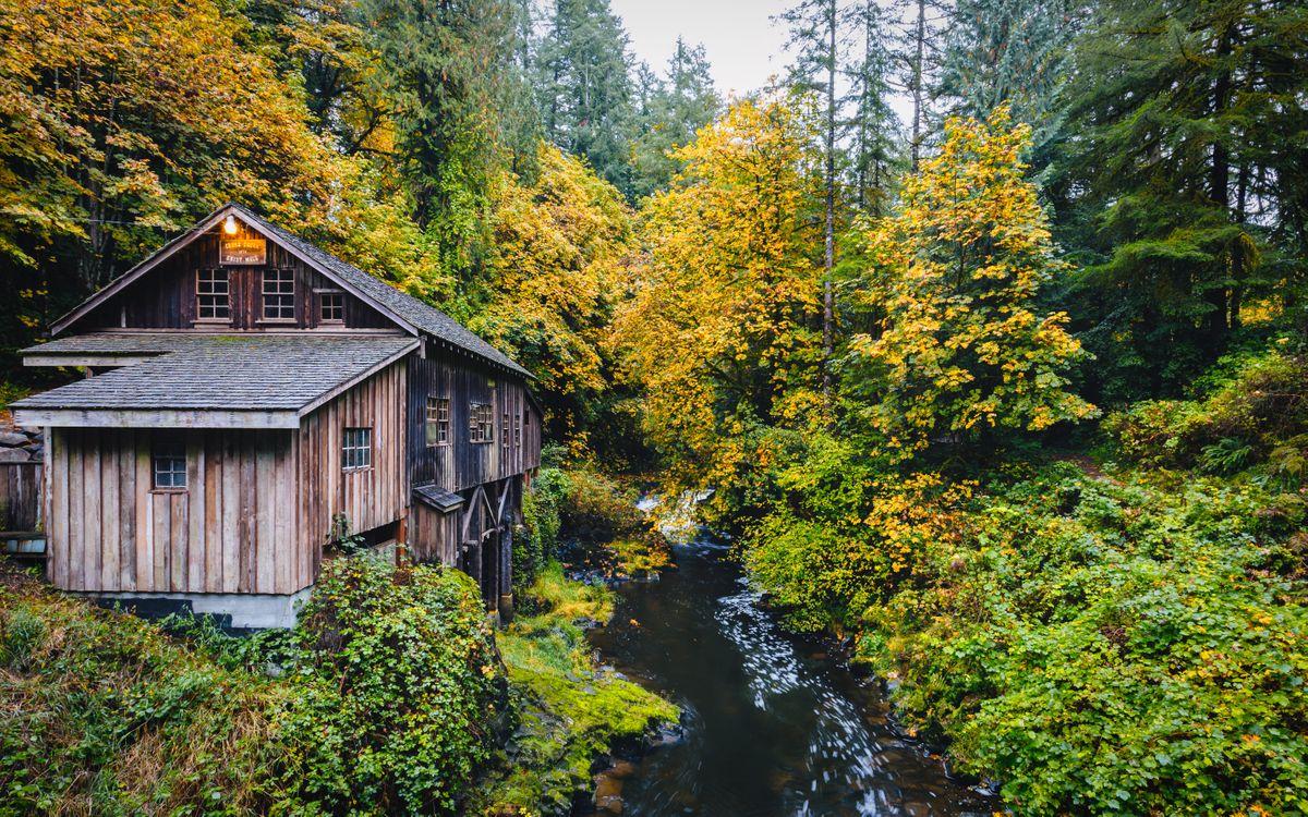 Free photo Cedar Creek Grist Mill, Washington, Autumn - to desktop