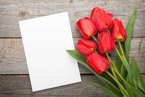 Фото бесплатно тюльпаны, флора - на рабочий стол
