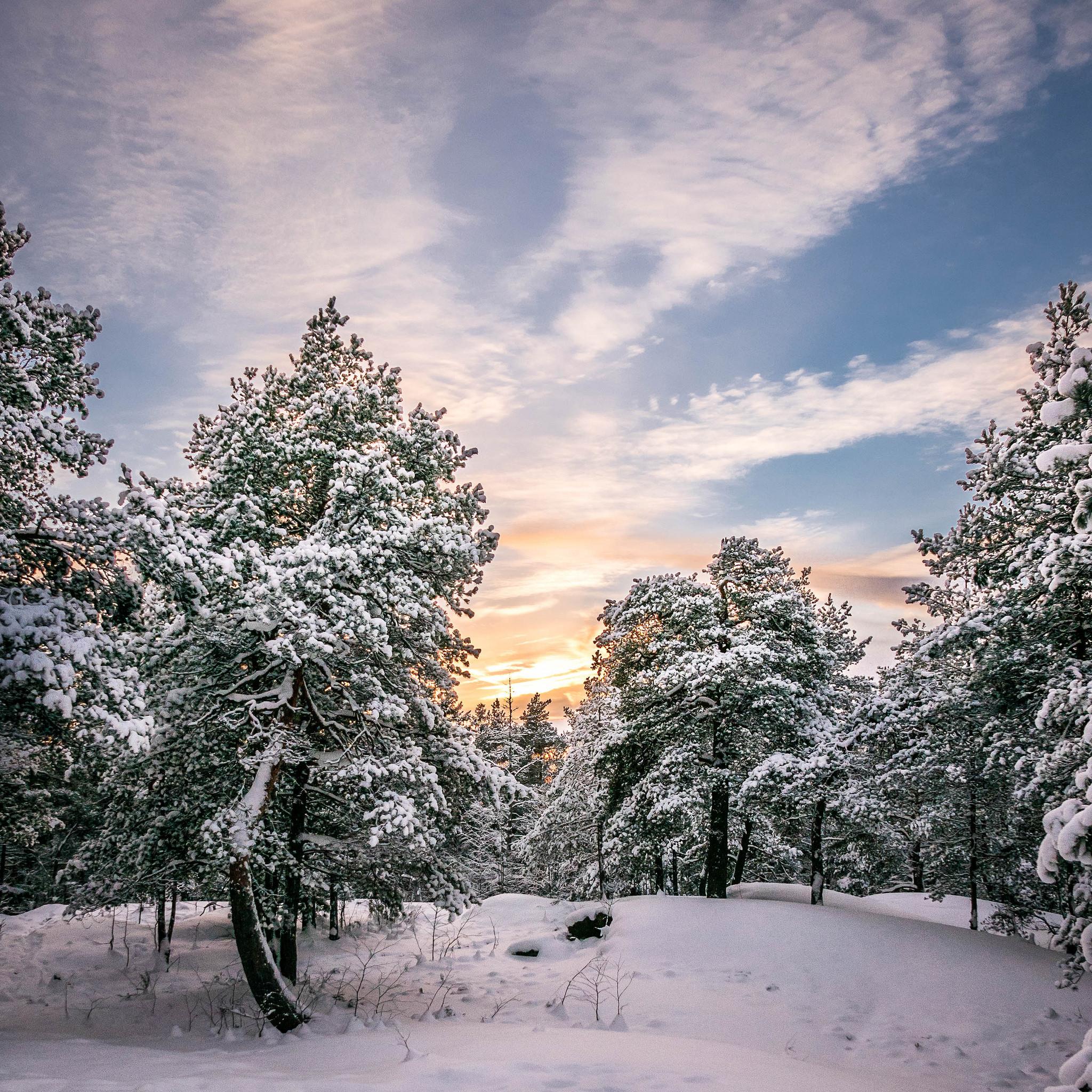 закат, зима, сугробы