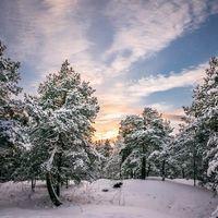 Обои закат, зима, сугробы, деревья, пейзаж, Viherkallio, Espoo, Finland