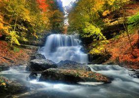 Бесплатные фото осень,лес,деревья,водопад,каскад,скалы,пейзаж