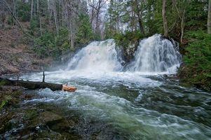 Фото бесплатно водопад, водопад Робертсон-Крик, деревья