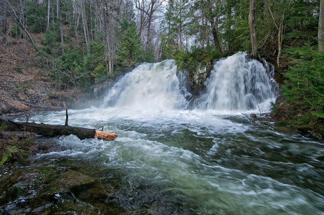 Фото бесплатно robertson creek falls, vankoughnet township, ontario, водопад, лес, деревья, природа, природа