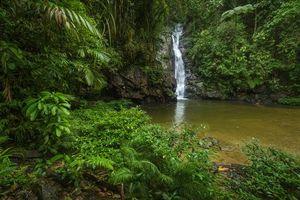 Фото бесплатно река, скалы, деревья