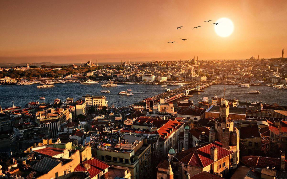 Фото бесплатно дома, здания, крыши, улицы, река, суда, мост, птицы, небо, солнце, город