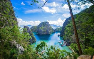 Фото бесплатно деревья, берега, острова
