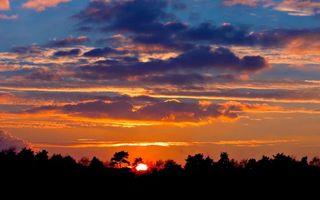 Бесплатные фото вечер,деревья,макушки,небо,облака,солнце,закат