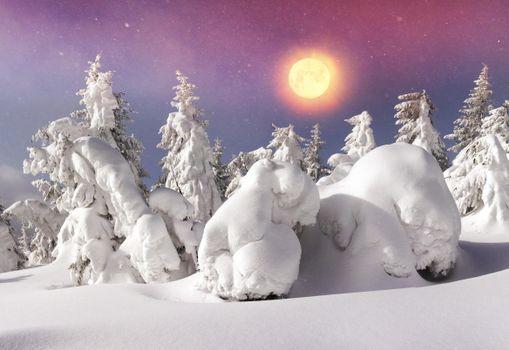 Фото галерея сугробы, снег