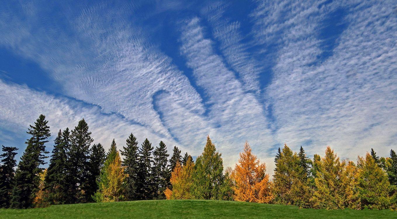 Фото бесплатно осень, холм, деревья, небо, облака, пейзаж, пейзажи