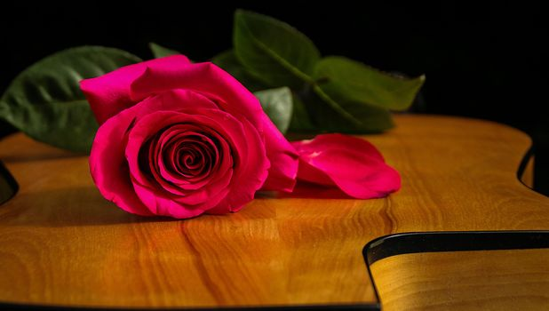 Photo free rose, flora, guitar