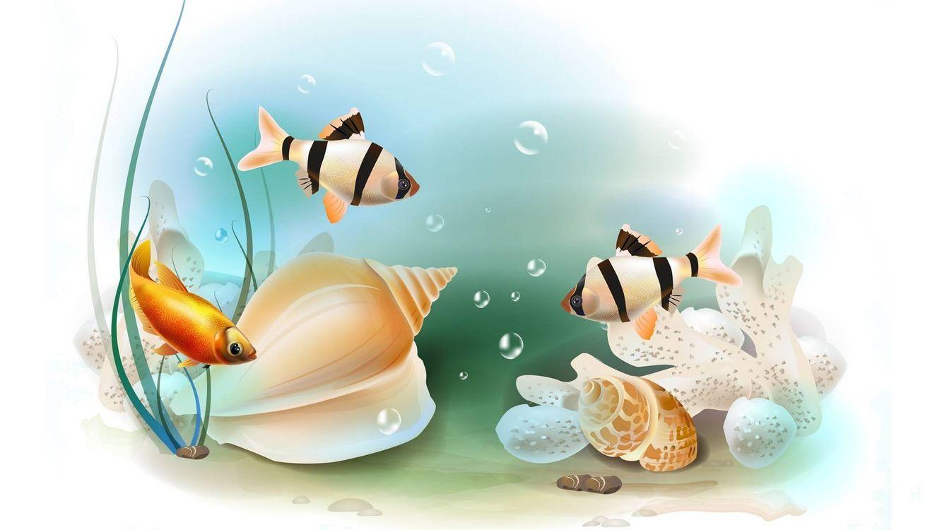 Фото бесплатно аквариум, рыбки, барбусы, ракушка, art, рендеринг