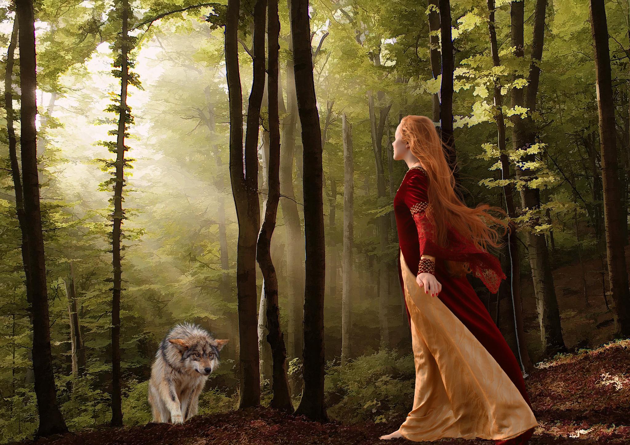Обои лес, деревья, девушка, волк