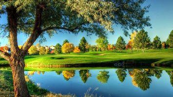 Бесплатные фото река,поляна,трава,деревья,парк
