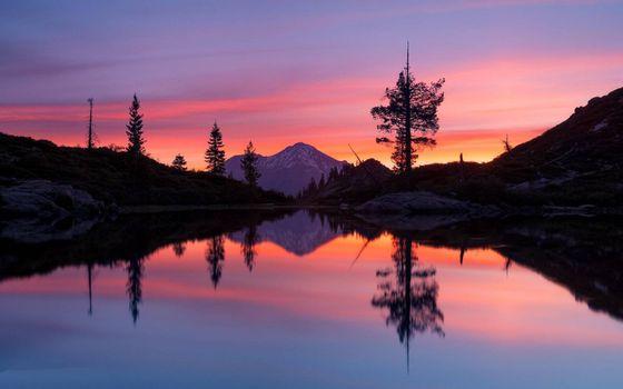 Photo free amber sky, lake, trees