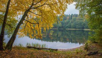 Фото бесплатно озеро, осень, деревья, пейзаж